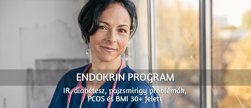 endokrin_program